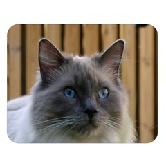Ragdoll, Blue Double Sided Flano Blanket (Large)