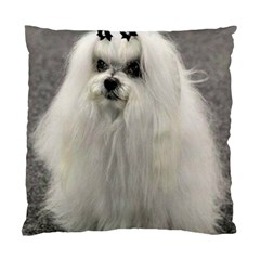 Maltese 2 Standard Cushion Case (One Side)