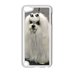 Maltese 2 Apple iPod Touch 5 Case (White)