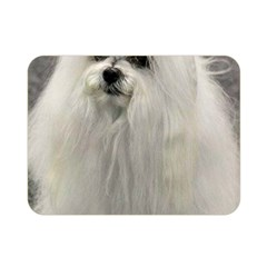 Maltese 2 Double Sided Flano Blanket (Mini)