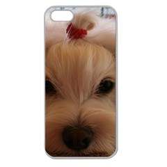 Maltese 3 Apple Seamless Iphone 5 Case (clear)