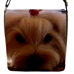 Maltese 3 Flap Messenger Bag (S)