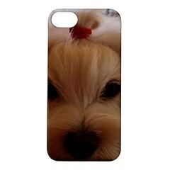 Maltese 3 Apple iPhone 5S/ SE Hardshell Case