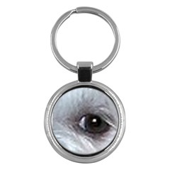 Maltese Eyes Key Chains (Round)