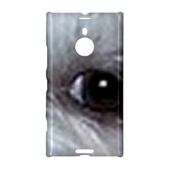 Maltese Eyes Nokia Lumia 1520