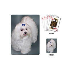 Maltese Full 2 Playing Cards (Mini)