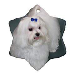 Maltese Full 2 Ornament (Snowflake)