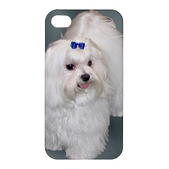 Maltese Full 2 Apple iPhone 4/4S Premium Hardshell Case