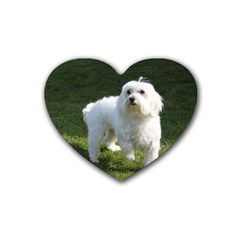 Maltese Full Heart Coaster (4 pack)