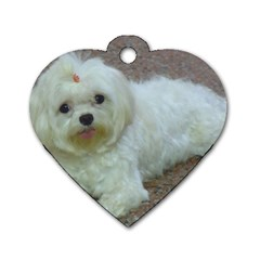 Maltese Laying Dog Tag Heart (One Side)