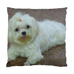 Maltese Laying Standard Cushion Case (One Side)