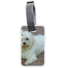 Maltese Laying Luggage Tags (One Side)