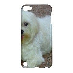 Maltese Laying Apple iPod Touch 5 Hardshell Case