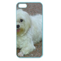 Maltese Laying Apple Seamless Iphone 5 Case (color)