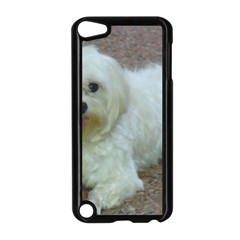 Maltese Laying Apple iPod Touch 5 Case (Black)