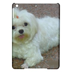 Maltese Laying iPad Air Hardshell Cases