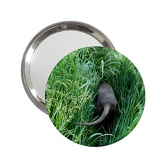 Weim In The Grass 2.25  Handbag Mirrors