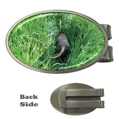 Weim In The Grass Money Clips (Oval)