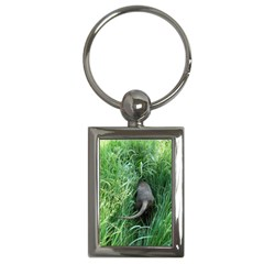 Weim In The Grass Key Chains (Rectangle)