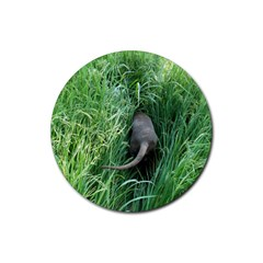 Weim In The Grass Rubber Coaster (Round)