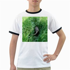 Weim In The Grass Ringer T-Shirts