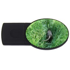 Weim In The Grass USB Flash Drive Oval (4 GB)