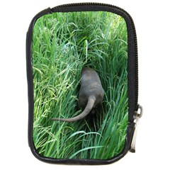 Weim In The Grass Compact Camera Cases