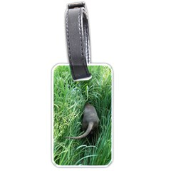 Weim In The Grass Luggage Tags (One Side)