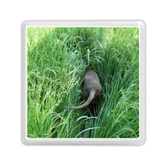 Weim In The Grass Memory Card Reader (Square)