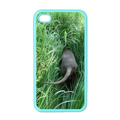 Weim In The Grass Apple iPhone 4 Case (Color)