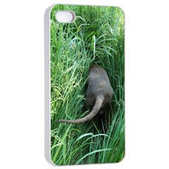 Weim In The Grass Apple iPhone 4/4s Seamless Case (White)