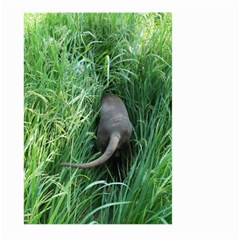 Weim In The Grass Large Garden Flag (Two Sides)