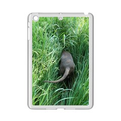 Weim In The Grass iPad Mini 2 Enamel Coated Cases