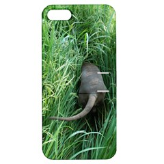 Weim In The Grass Apple iPhone 5 Hardshell Case with Stand