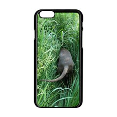 Weim In The Grass Apple iPhone 6/6S Black Enamel Case