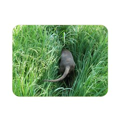 Weim In The Grass Double Sided Flano Blanket (Mini)