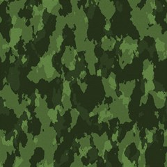 Camouflage Green Army Texture Magic Photo Cubes