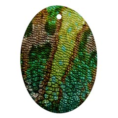 Chameleon Skin Texture Oval Ornament (two Sides)