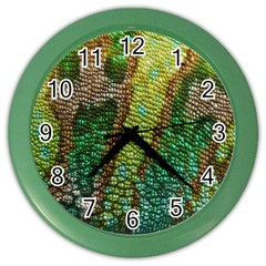 Chameleon Skin Texture Color Wall Clocks