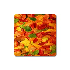 Leaves Texture Square Magnet