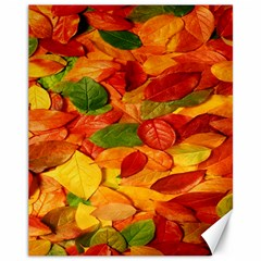 Leaves Texture Canvas 11  X 14