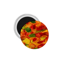 Leaves Texture 1.75  Magnets