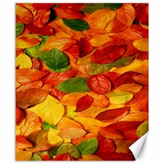 Leaves Texture Canvas 8  x 10