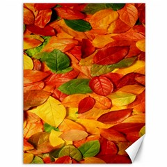 Leaves Texture Canvas 36  X 48