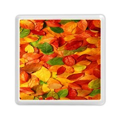Leaves Texture Memory Card Reader (Square)