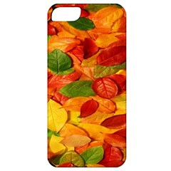 Leaves Texture Apple iPhone 5 Classic Hardshell Case