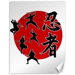 Ninja Canvas 12  x 16