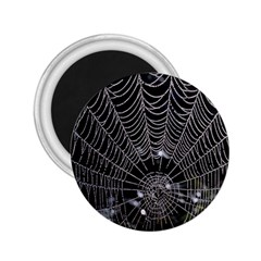 Spider Web Wallpaper 14 2 25  Magnets