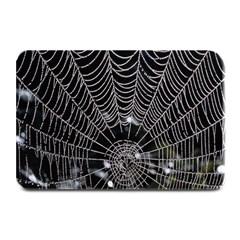 Spider Web Wallpaper 14 Plate Mats