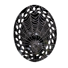 Spider Web Wallpaper 14 Ornament (Oval Filigree)